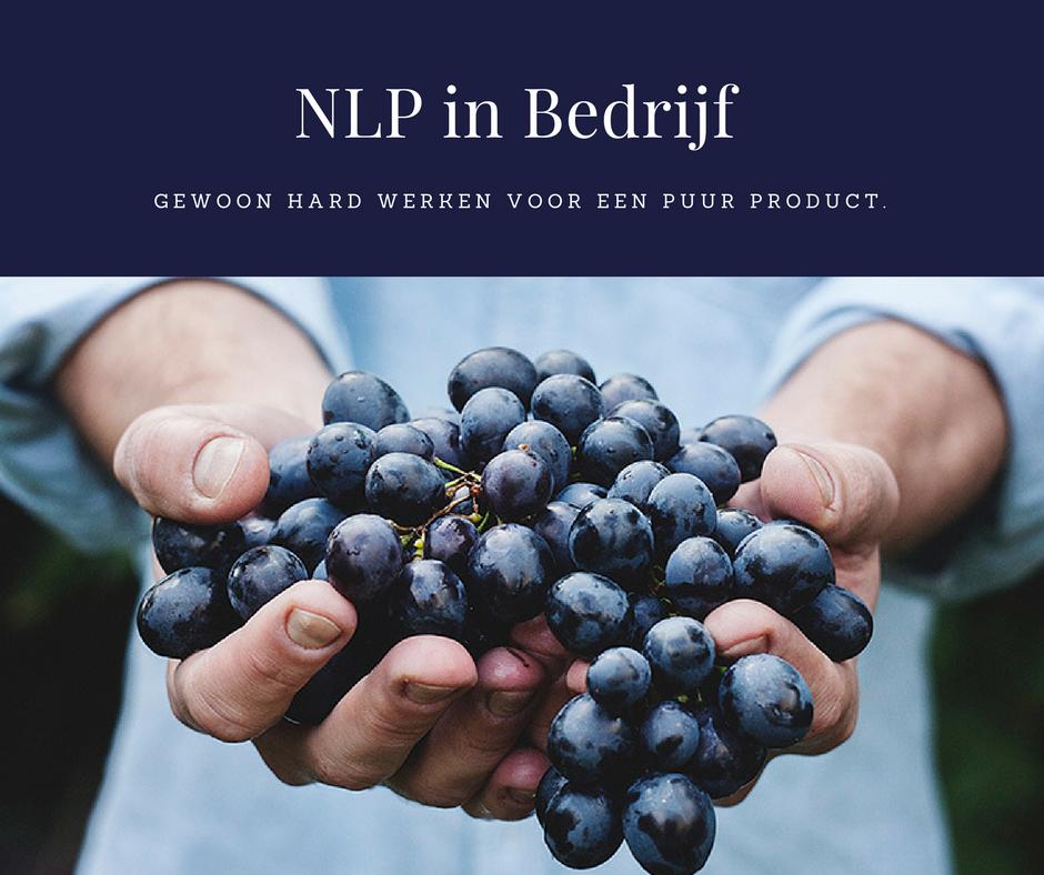NLP in Bedrijf gewoon hard werken voor een puur product Axis Consultancy nlp in bedrijf