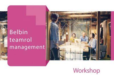 Belbin Workshop Marijn Dane Axis Consultancy